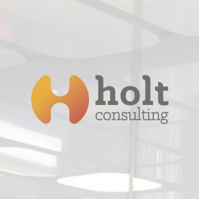HOLT CONSULTING PREVIEW